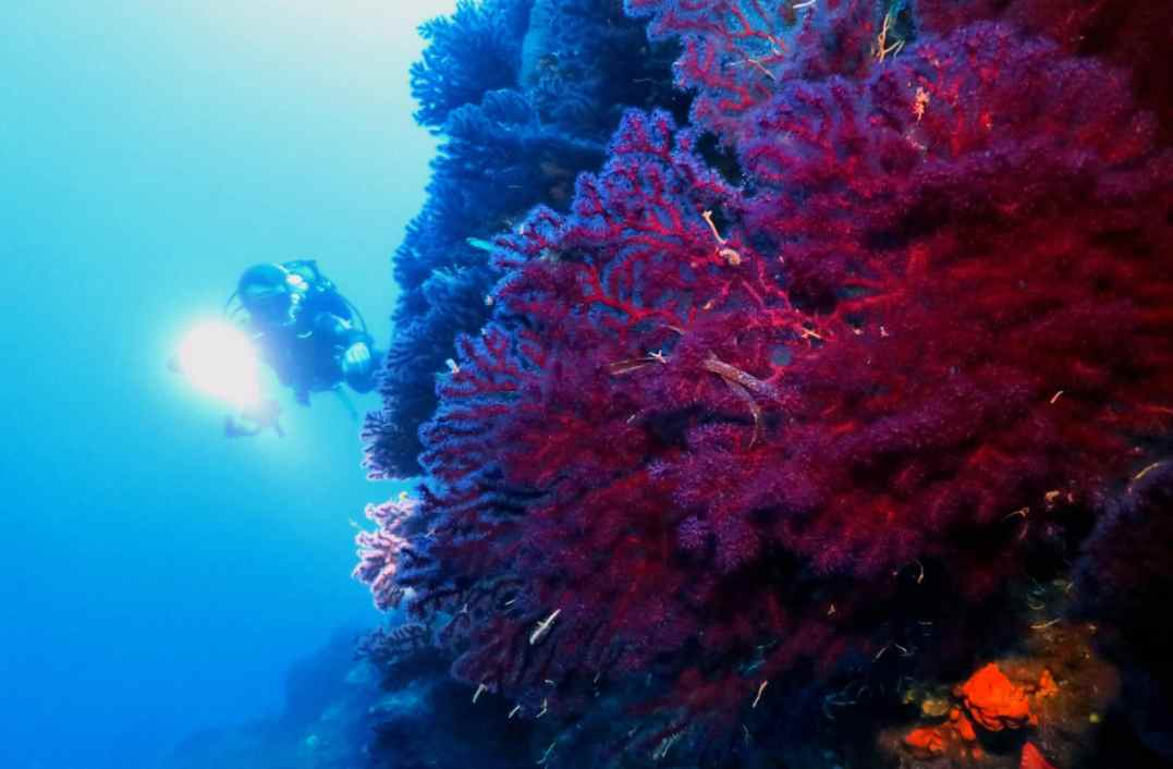 scuba diving Alonissos Greece